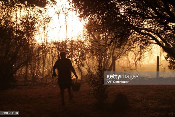 A man tries to protect his house with a bucket of water as a fire is burning in the night of August 11 2017 in Pietracorbara on the French...
