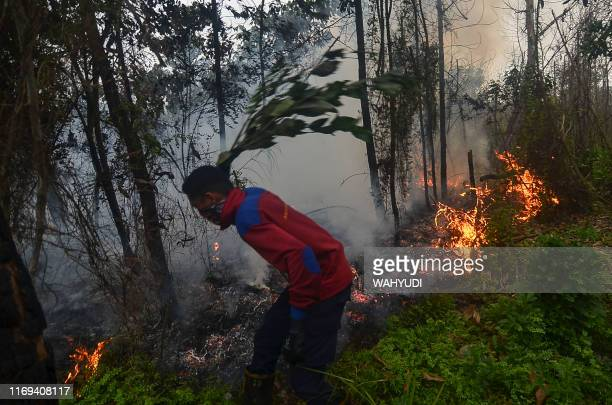 A man tries to put out a forest fire near his village in Pekanbaru Riau on September 19 as smog from the fires choke the region Malaysia said...