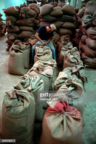 Man Tying Burlap Sacks of Coffee
