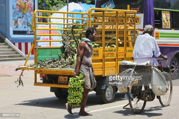 Man unloads bunches of bananas from a small truck in Thiruvarur Tamil Nadu India