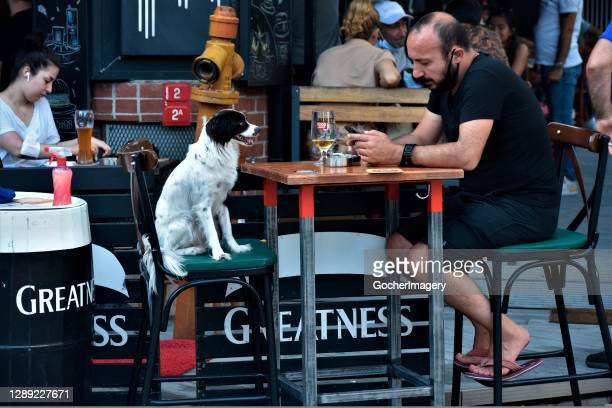 Man uses his mobile phone while sitting with his dog outside a pub on the second day of Eid al-Adha celebrations in Istanbul, Turkey.