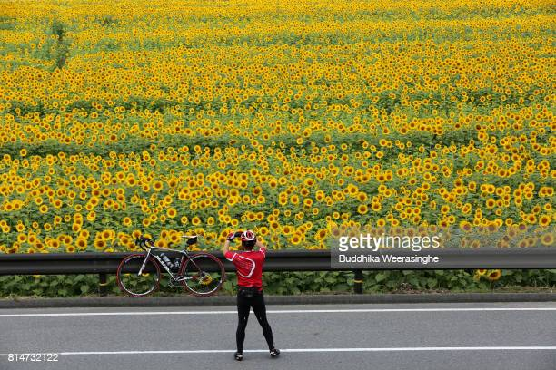 A man uses his smart phone to take a photo of his bicycle in front of the sunflower field during the annual Himawari Matsuri or Sunflower Festival at...