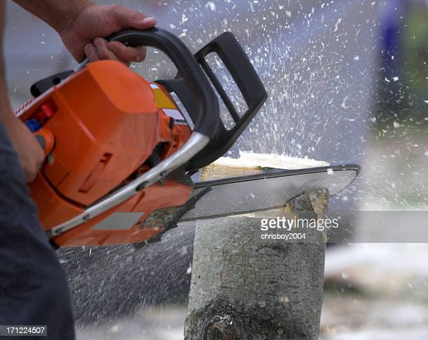 Man using chainsaw to cut down tree