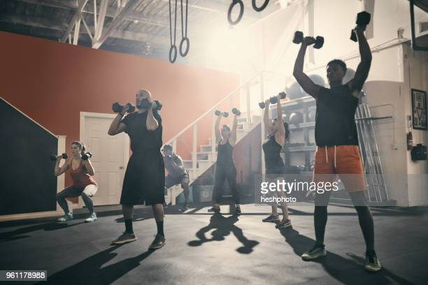 man using dumbbells in gym - heshphoto stockfoto's en -beelden