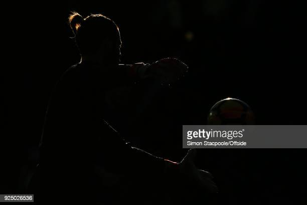 Man Utd goalkeeper David De Gea is silhouetted during the Premier League match between Manchester United and Chelsea at Old Trafford on February 25...