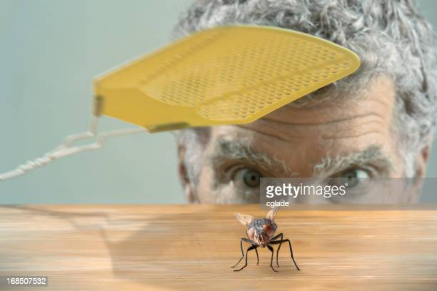 Man versus fly