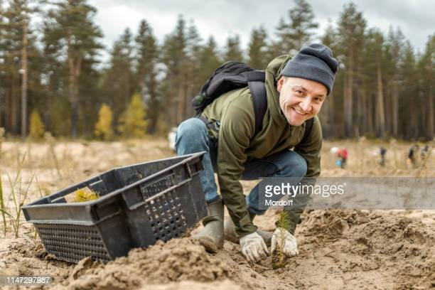 man volunteer takes part at the reforestation - planting stock pictures, royalty-free photos & images