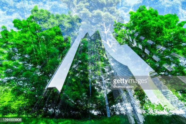 man vs nature - double exposure of trees and buildings - global stock pictures, royalty-free photos & images