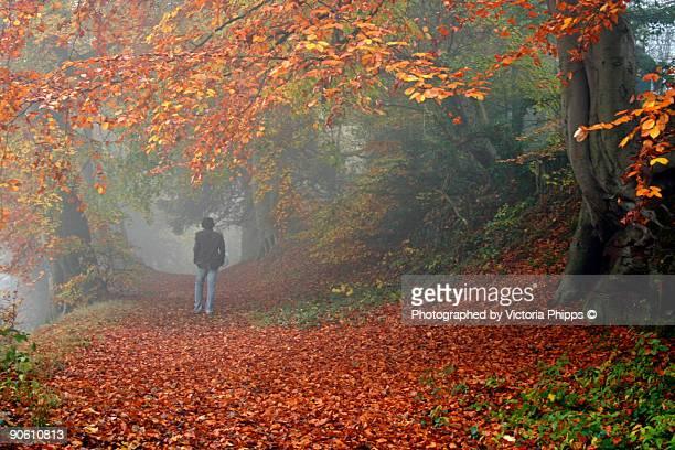 Man walked along the red carpet