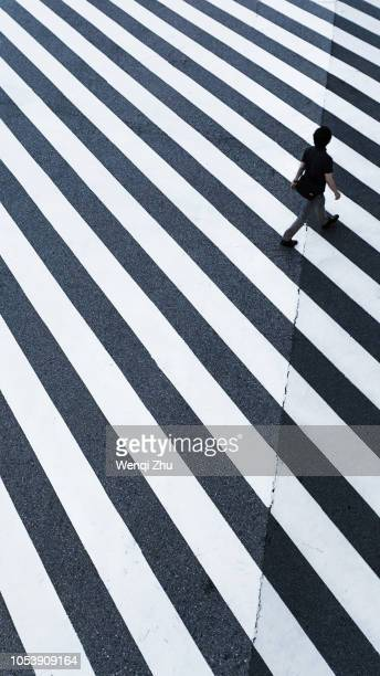 man walking across a zebra crossing - crossing stock pictures, royalty-free photos & images