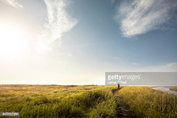 man walking alone down country path at sunset - rural scene stock pictures, royalty-free photos & images