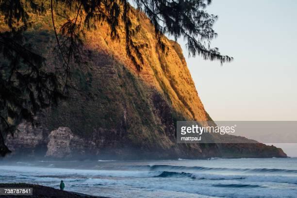Man walking along beach, Waipio Valley, Kukuihaele, Hamakua, Hawaii, America, USA