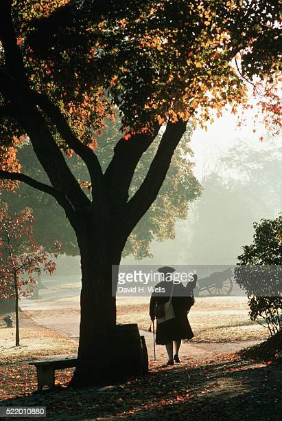man walking along in colonial williamsburg - williamsburg virginia stock pictures, royalty-free photos & images