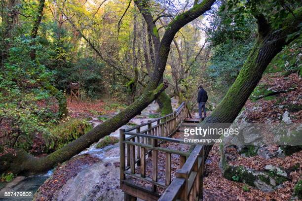 man walking along turgut waterfall near orhaniye village,marmaris. - emreturanphoto stock pictures, royalty-free photos & images