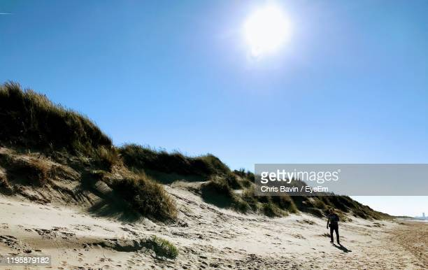 man walking at beach against clear sky during sunny day - belgium stock pictures, royalty-free photos & images