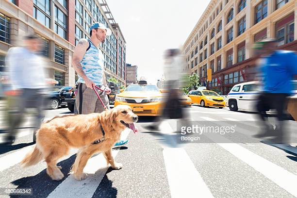 NYC Man Walking Dog in City Outdoors Summer