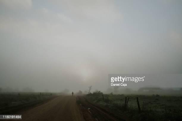 man walking down mennonite colony - paisajes de mejico fotografías e imágenes de stock
