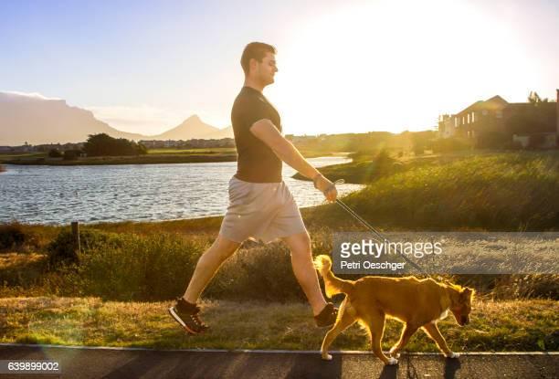 man walking his dog. - ランニングショートパンツ ストックフォトと画像