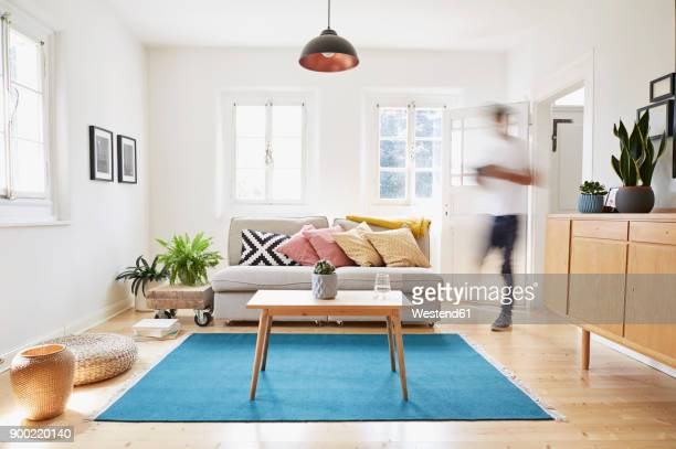 man walking in bright modern living room in an old country house - carpet decor stock photos and pictures