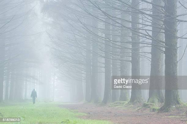 Man walking in fog, Dartmoor, Devon