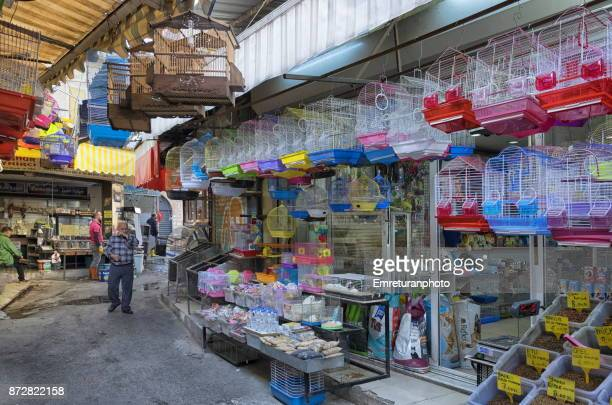 man walking in front of a petshop with birdcages in kemeralti,izmir. - emreturanphoto stock pictures, royalty-free photos & images