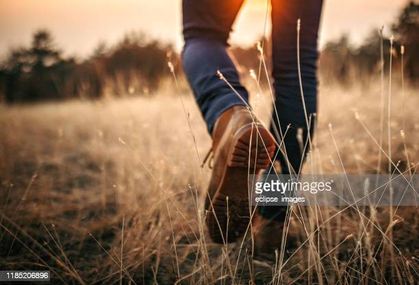 man walking in nature - hiking boot stock pictures, royalty-free photos & images