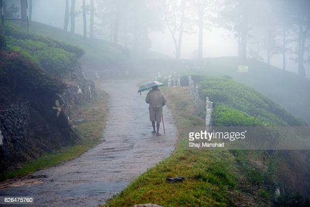 Man walking in the mist with his umbrella