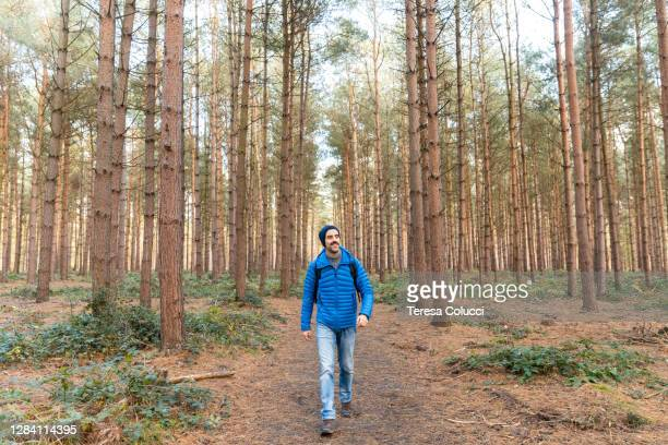 man walking on a path in the forest hiking and exploring wild remote areas - woodland stock pictures, royalty-free photos & images