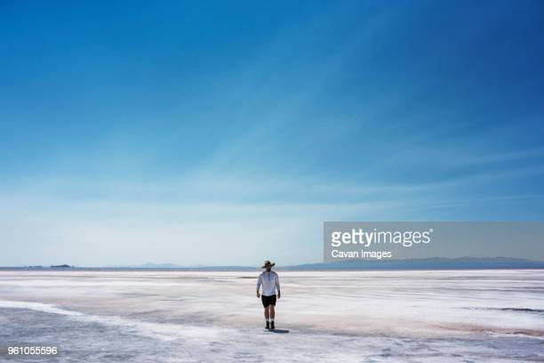 man walking on beach against sky - great salt lake stock pictures, royalty-free photos & images