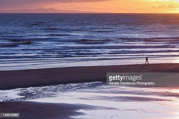 man walking on beach - daniele carotenuto stock-fotos und bilder