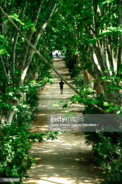 Man Walking On Footpath Amidst Trees