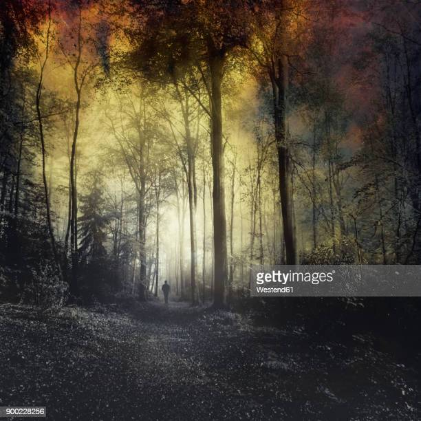Man walking on forest path