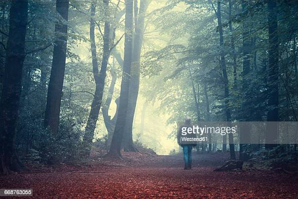 Man walking on forest track in morning light