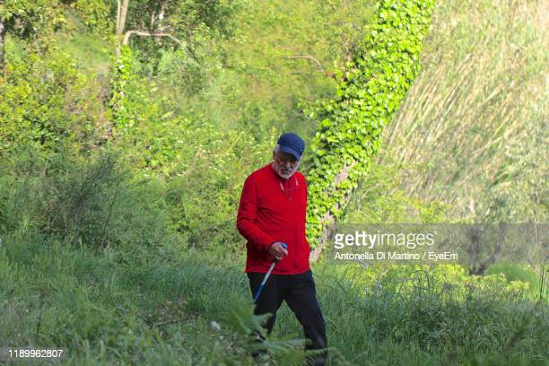 man walking on grass in forest - antonella di martino foto e immagini stock