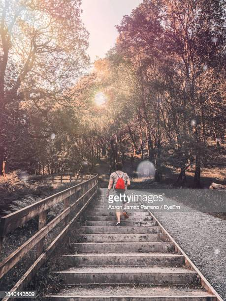 man walking on nature trail - leinster province stock pictures, royalty-free photos & images
