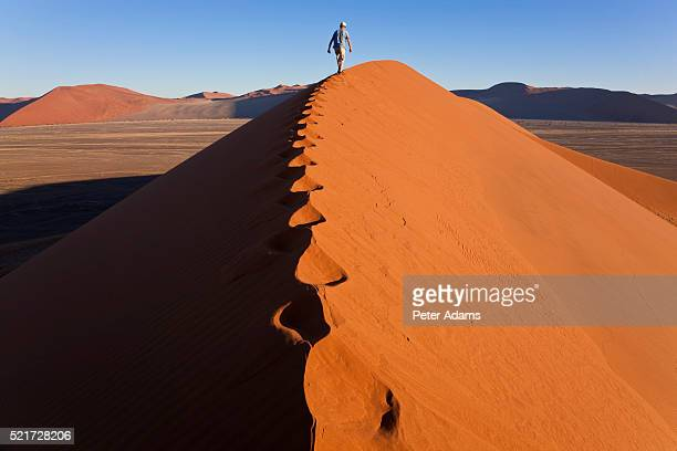 man walking on sand dune ridge - peter adams stock pictures, royalty-free photos & images