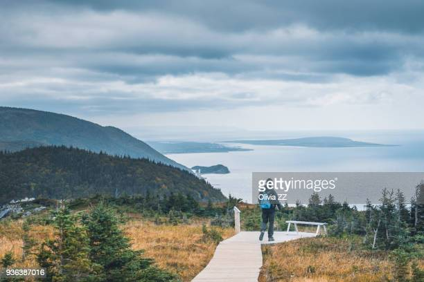 a man walking on skyline footpath, cape breton, canada. - nova scotia stock pictures, royalty-free photos & images