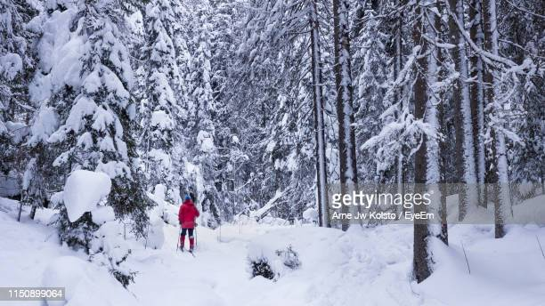 Man Walking On Snow Against Bare Trees In Forest
