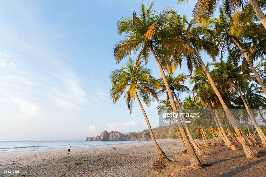 Man walking on the beach at sunrise, Playa Carrillo, Costa Rica : Foto de stock
