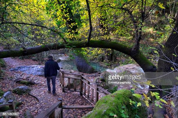 man walking on the wooden footpath along turgut waterfalls. - emreturanphoto stock pictures, royalty-free photos & images