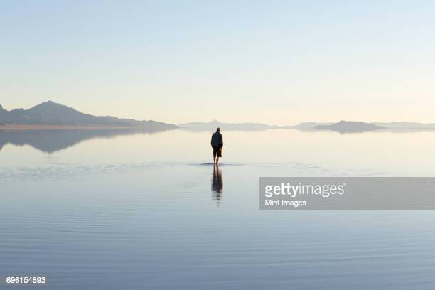 man walking on vast and flooded bonneville salt flats, utah - wading stock pictures, royalty-free photos & images