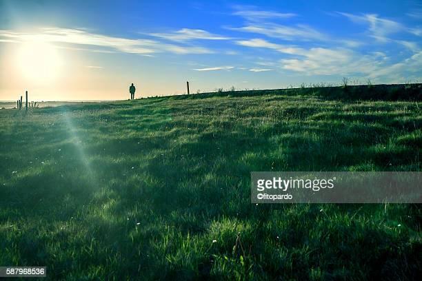 a man walking over a field with a sunset - región capital fotografías e imágenes de stock