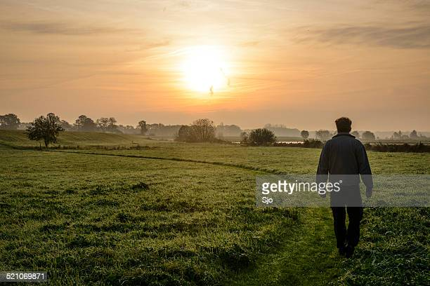 """man walking through a field in the morning - """"sjoerd van der wal"""" or """"sjo"""" stock pictures, royalty-free photos & images"""