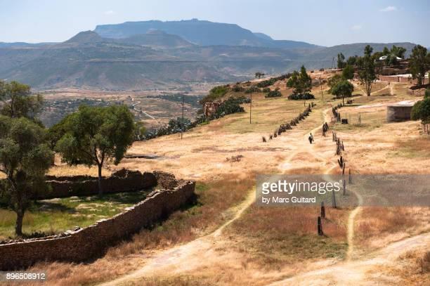 a man walking through a peaceful field at debre damo monastery viewpoint, tigray, ethiopia - tigray stock photos and pictures