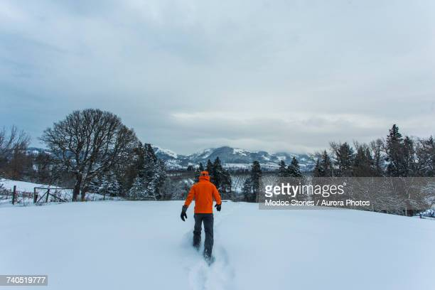 man walking through snow - hood river valley stock pictures, royalty-free photos & images