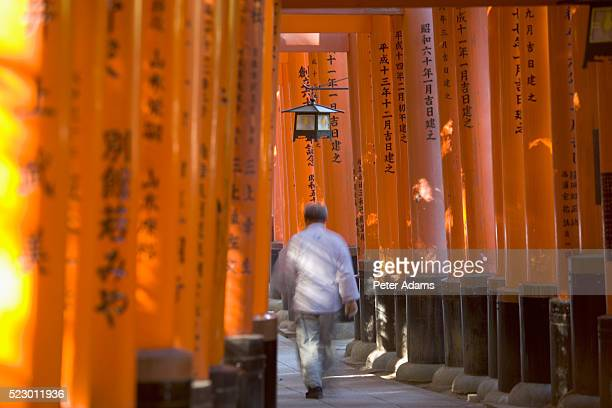 man walking through torii gates - shinto shrine stock pictures, royalty-free photos & images