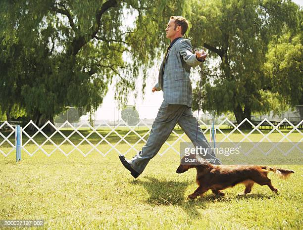 Man walking with Dachshund at dog show