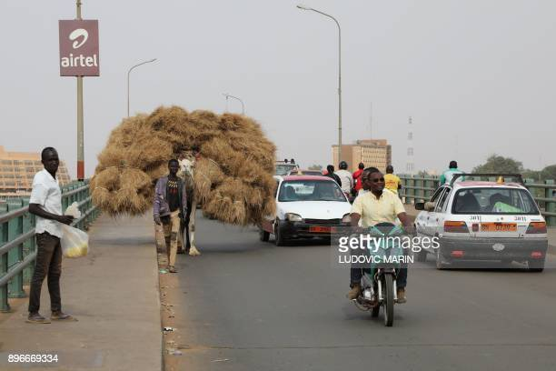 A man walks a camel carrying herbs across a bridge over the Niger River on December 21 in Niamey / AFP PHOTO / LUDOVIC MARIN