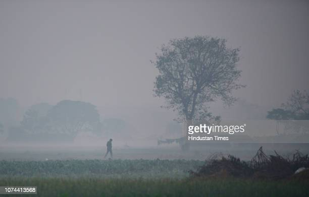 A man walks across a field enveloped in the morning smog near Mayur Vihar on December 18 2018 in New Delhi India Last three consecutive days have...