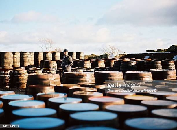 man walks amongst barrels - distillery stock pictures, royalty-free photos & images